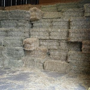 Hay, Straw & Bedding