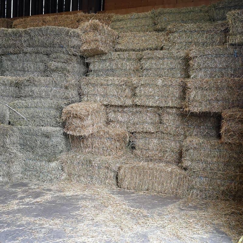 Hay, Straw & Bedding